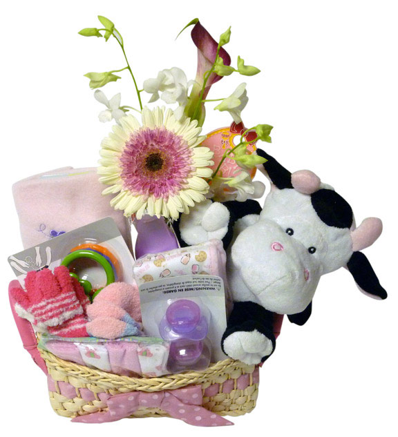 Sofia florist new mom baby flowers flowers delivery sofia you may also like negle Gallery